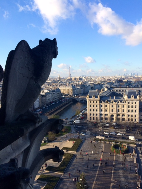 Notre Dame view 3