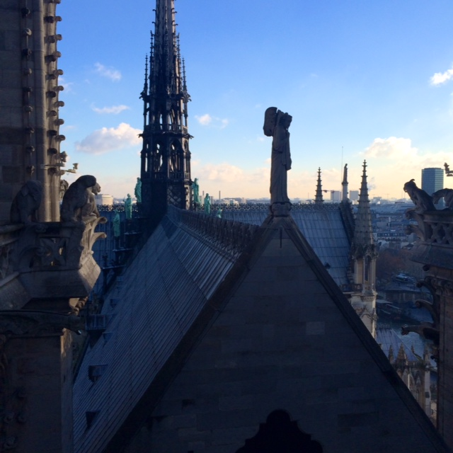 Notre Dame view 4